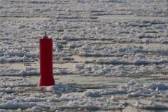 Winter an der Elbe - 25.01.2010