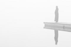 Nebel - 2012